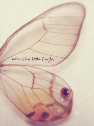 fragile sylph