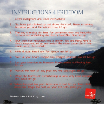 instructions for freedom