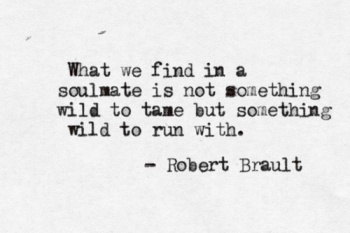 wild soulmate