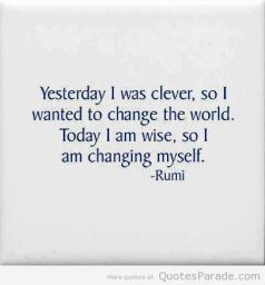 clever, wise rumi