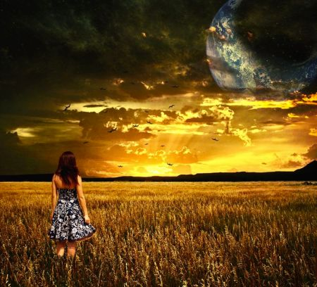 moonlight breeze