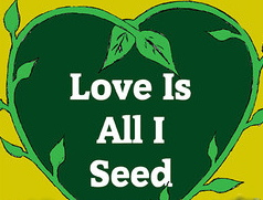 love is all i seed