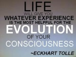 echart tolle | life evolution